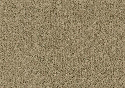 Tapijt Den Bosch : Jan fabre mag ondanks gesmijt met katten tapijt voor